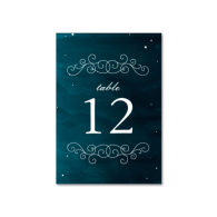 stargazer_wedding_table_numbers_table_cards-256108370753830052