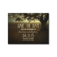 string_lights_tree_romantic_save_the_date_postcard-239138860998477534
