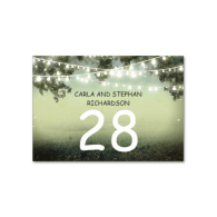 string_lighs_wedding_table_number_card_place_card_table_card-256541799017961019