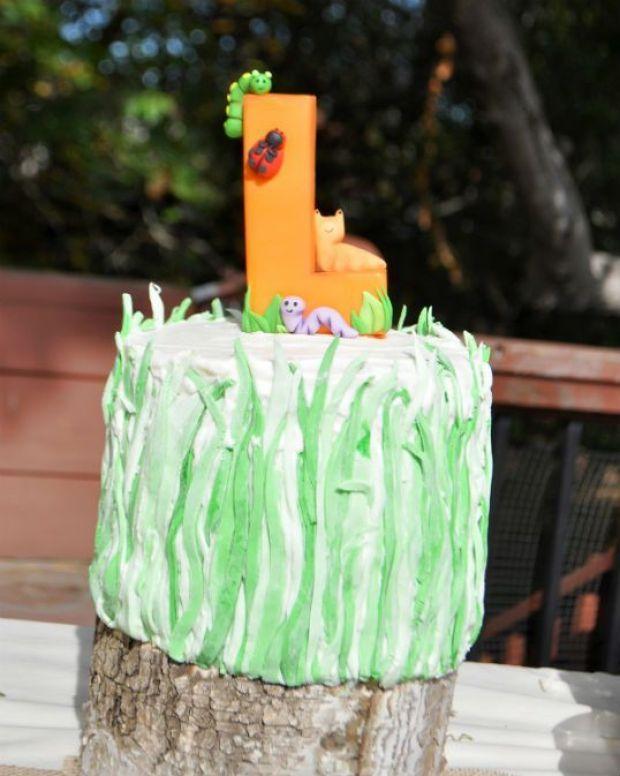 bug+party+cake.jpg