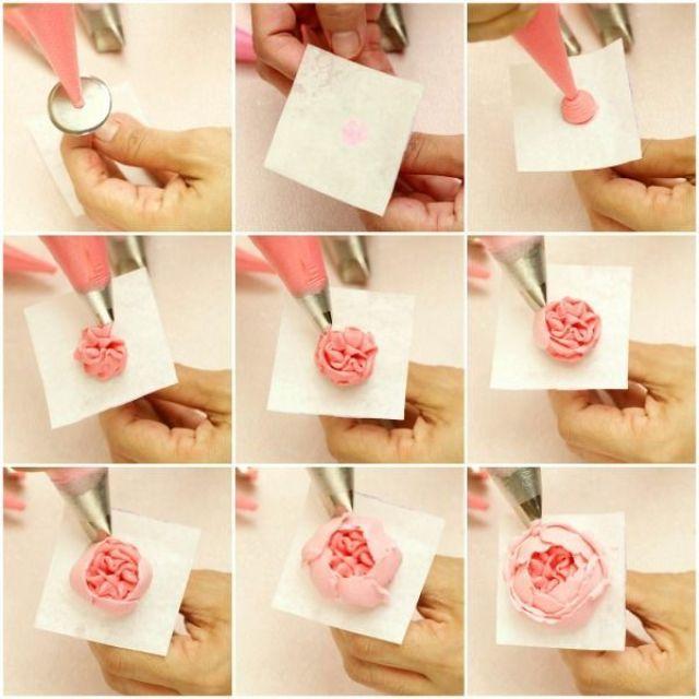 rose (1).jpg