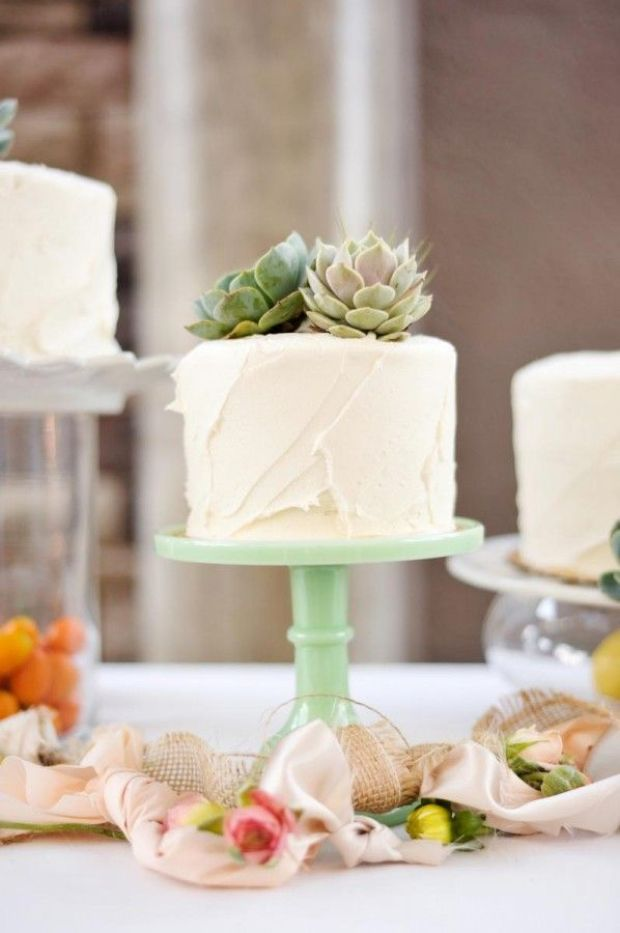 simple-white-wedding-cake-with-succulent-toppers.jpg