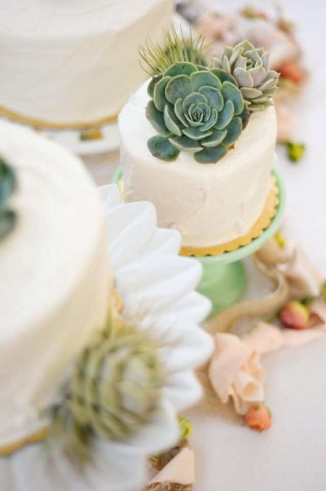 succulent-cake-toppers