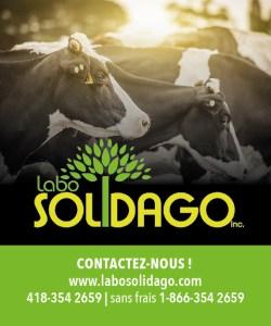 Labo Solidago est un laboratoire de développement et de fabrication de produits de santé naturels pour animaux.