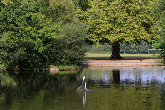 wandsworth-common-lake-lavenders-blue-stuart-blakley