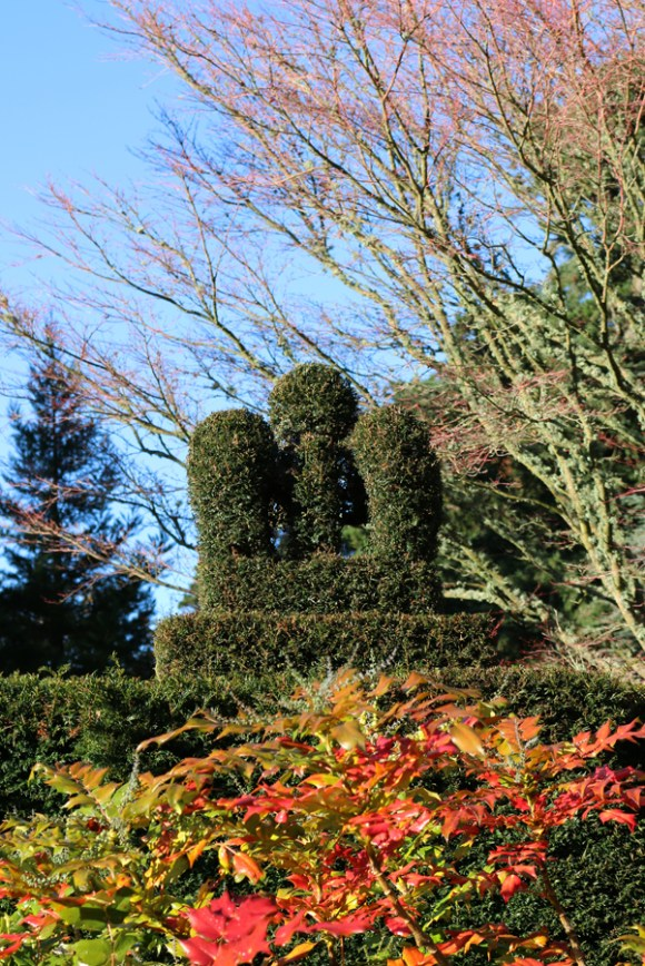 mount-stewart-greyabbey-crown-jewels-topiary-lavenders-blue-stuart-blakley