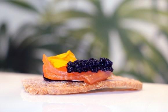c-p-hart-urban-jungle-party-caviar-lavenders-blue-stuart-blakley