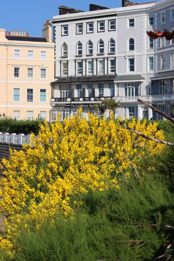 Terrace Esplanade Hastings East Sussex © Lavender's Blue Stuart Blakley