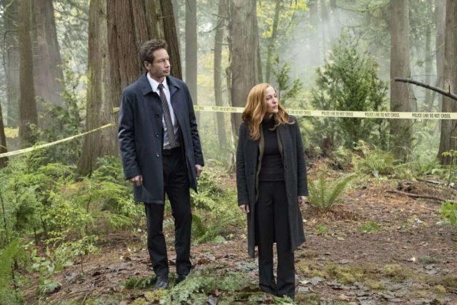 x-files - X-Files saison 11 épisode 6 : action secondaire, conséquences primaires The X Files Episode 6 Season 11 Kitten 03 critique