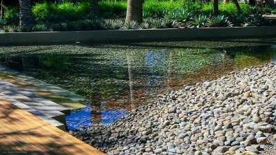 A stony pond