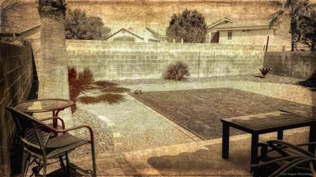 my-backyard