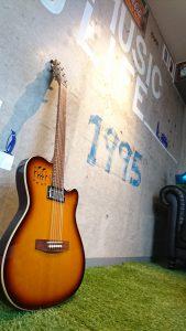 ゴダンのギター