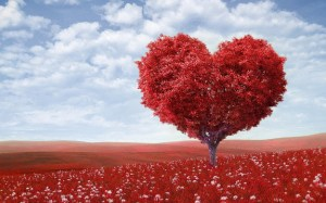 Fruit of the Spirit is love - picture of red tree shaped as a heart.