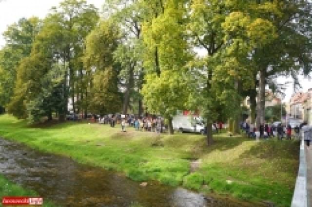 Protest w Mirsku. Stanowcze NIE dla odpadów z Niemiec 37