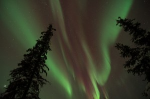 Aurora overhead in the Goldstream Valley outside Fairbanks