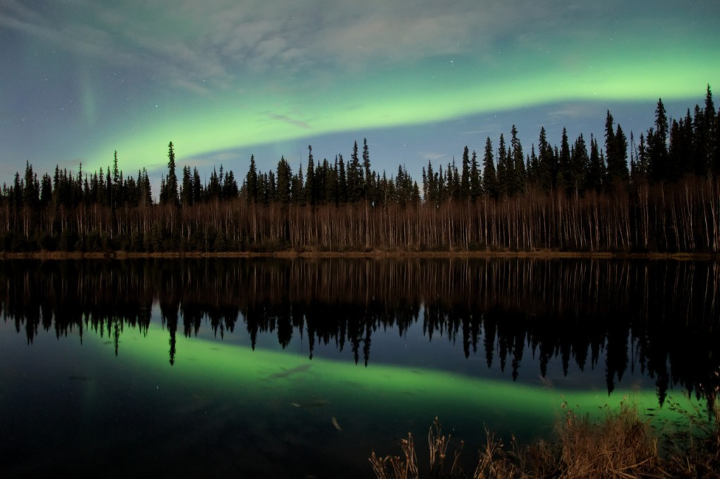 Aurora borealis, or northern lights, reflecting in a pond near Fairbanks, Alaska.