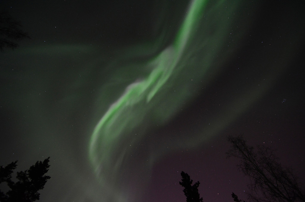 Aurora borealis directly overhead