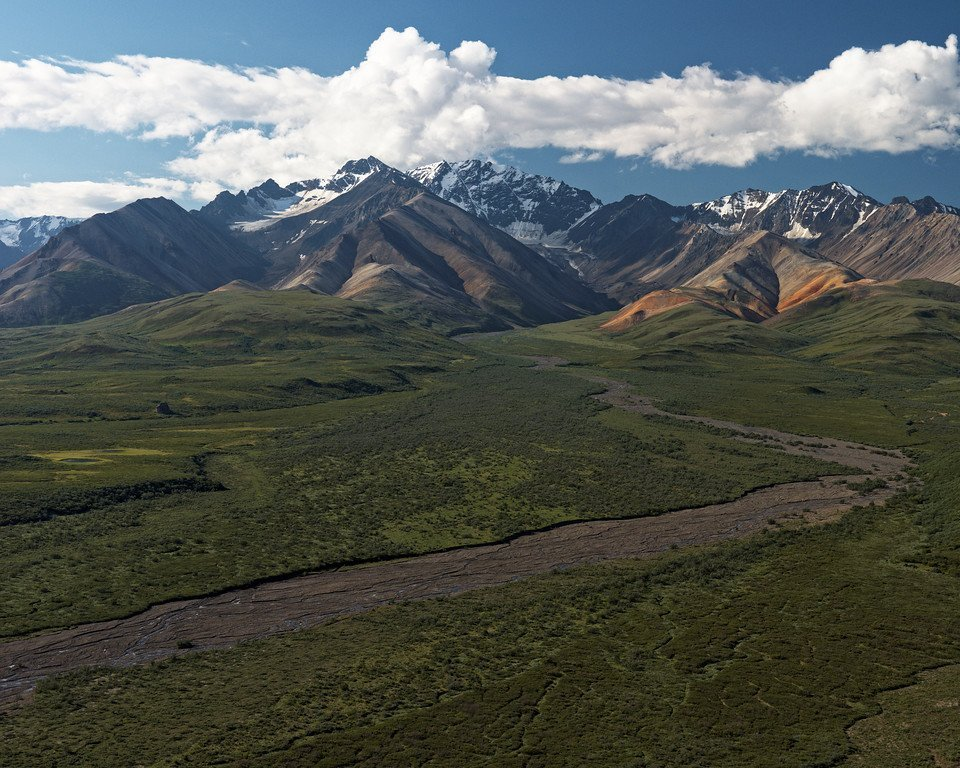 View from Polychrome Overlook. Denali National Park