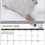 January display image from 2020 wall calendar by Lee Petersen
