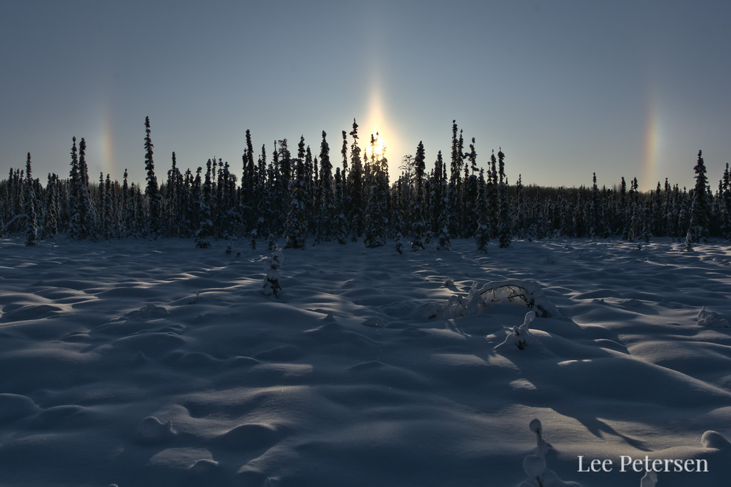 Parhelia, or sun dogs in the sky over a snowy forest in Fairbanks, Alaska