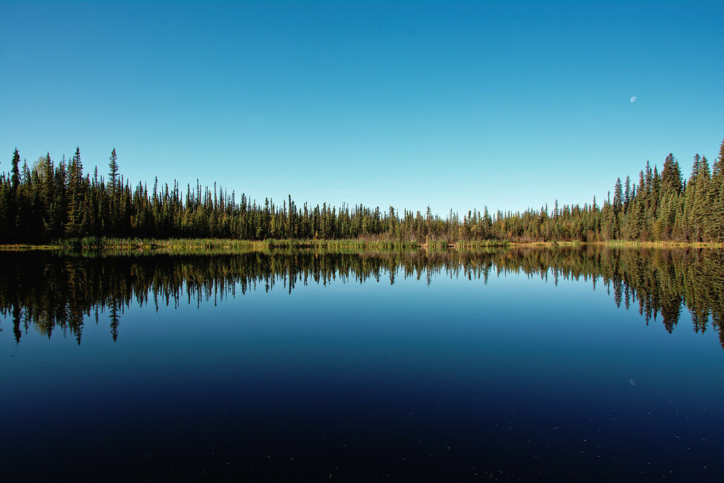 Reflection on Ballaine Lake in Fairbanks, Alaska