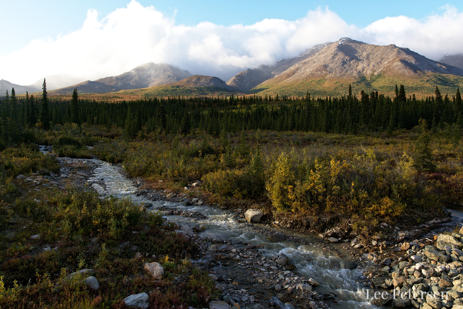 Mountain stream near the park entrance in Denali National Park