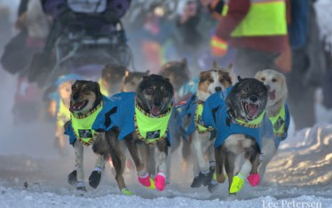 Michelle Phillips dog team starting the 2020 Yukon Quest in Fairbanks, Alaska