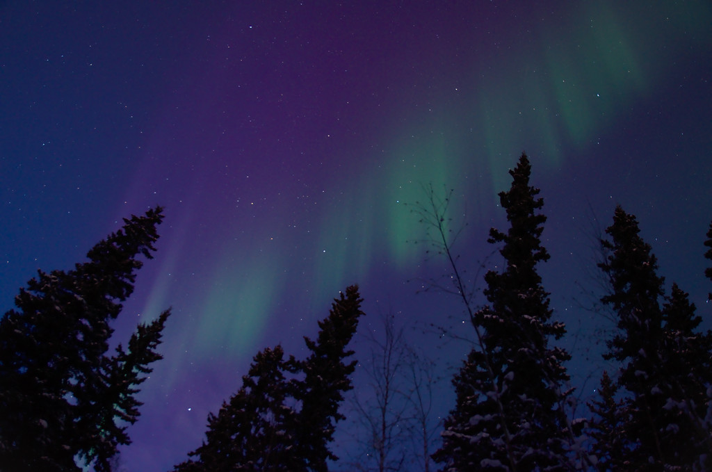 the aurora comes out while it's still twilight