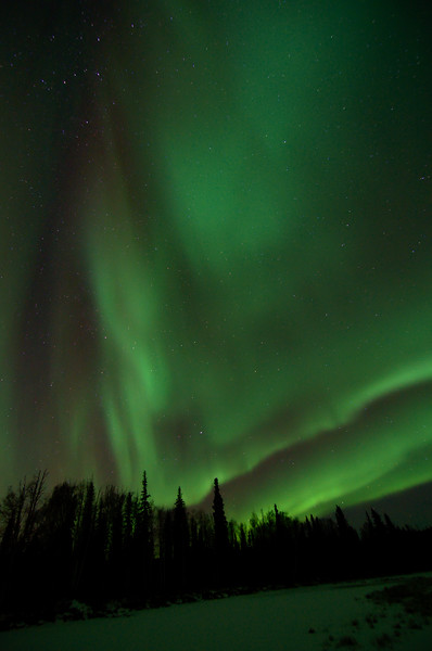 Aurora bursts overhead from the bands that had been sitting near the horizon. Off Chena Hot Springs Road.