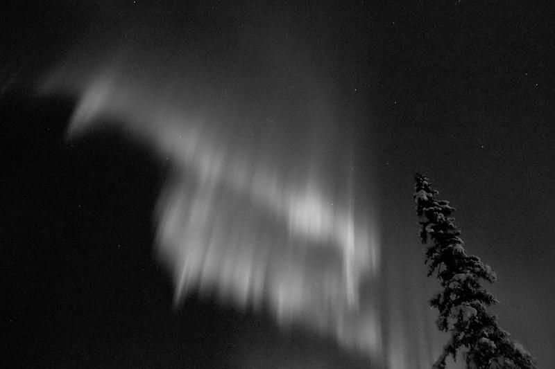 Stunning aurora display over Fairbanks, Alaska.