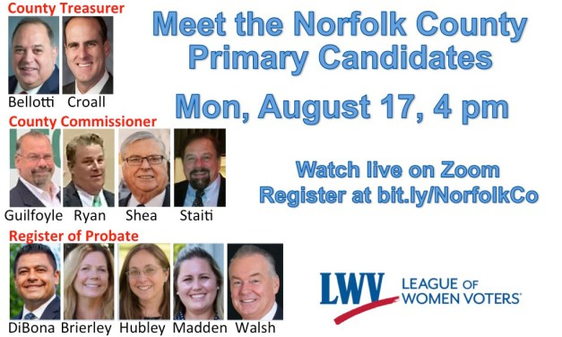 Norfolk County Primary Candidates