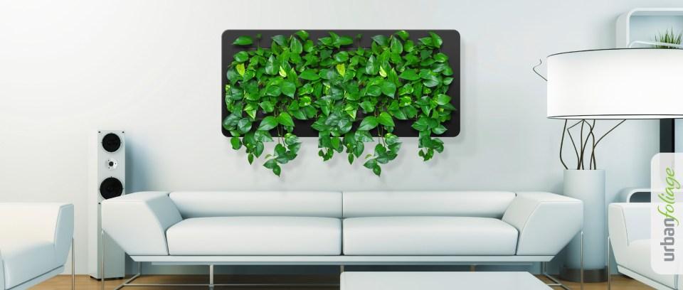 Urban Foliage 4