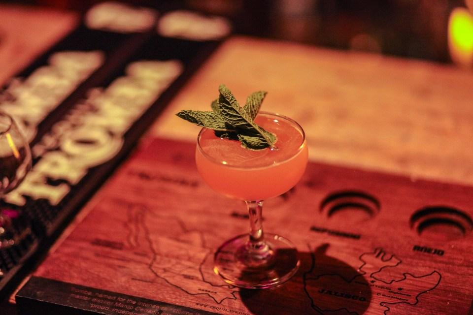 tromba tequila experience 7