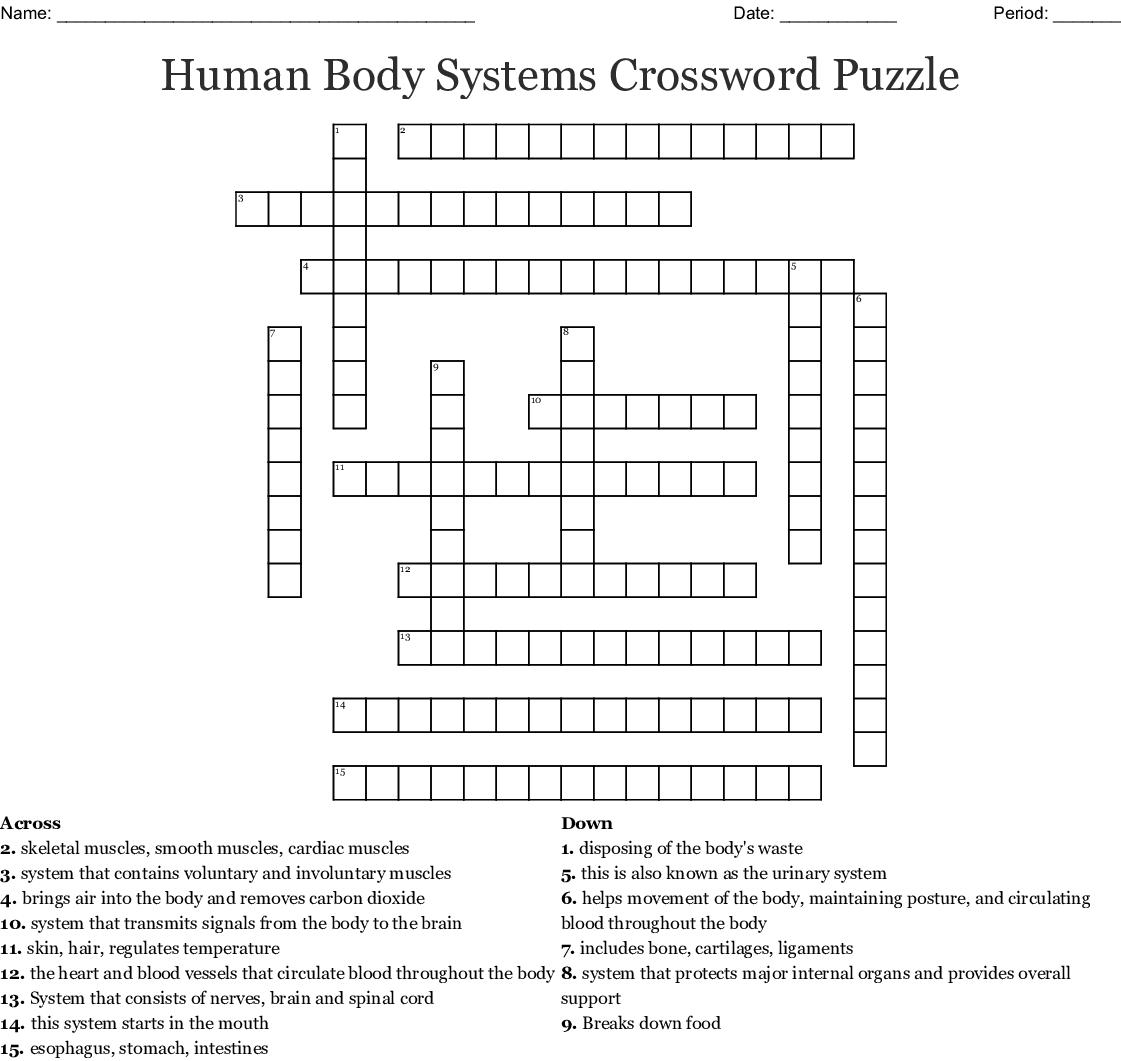 Free Printable Crossword Puzzles Body Parts