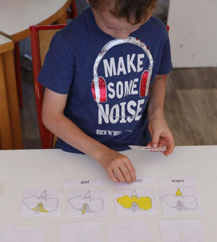l enfant apprend avec autonomie