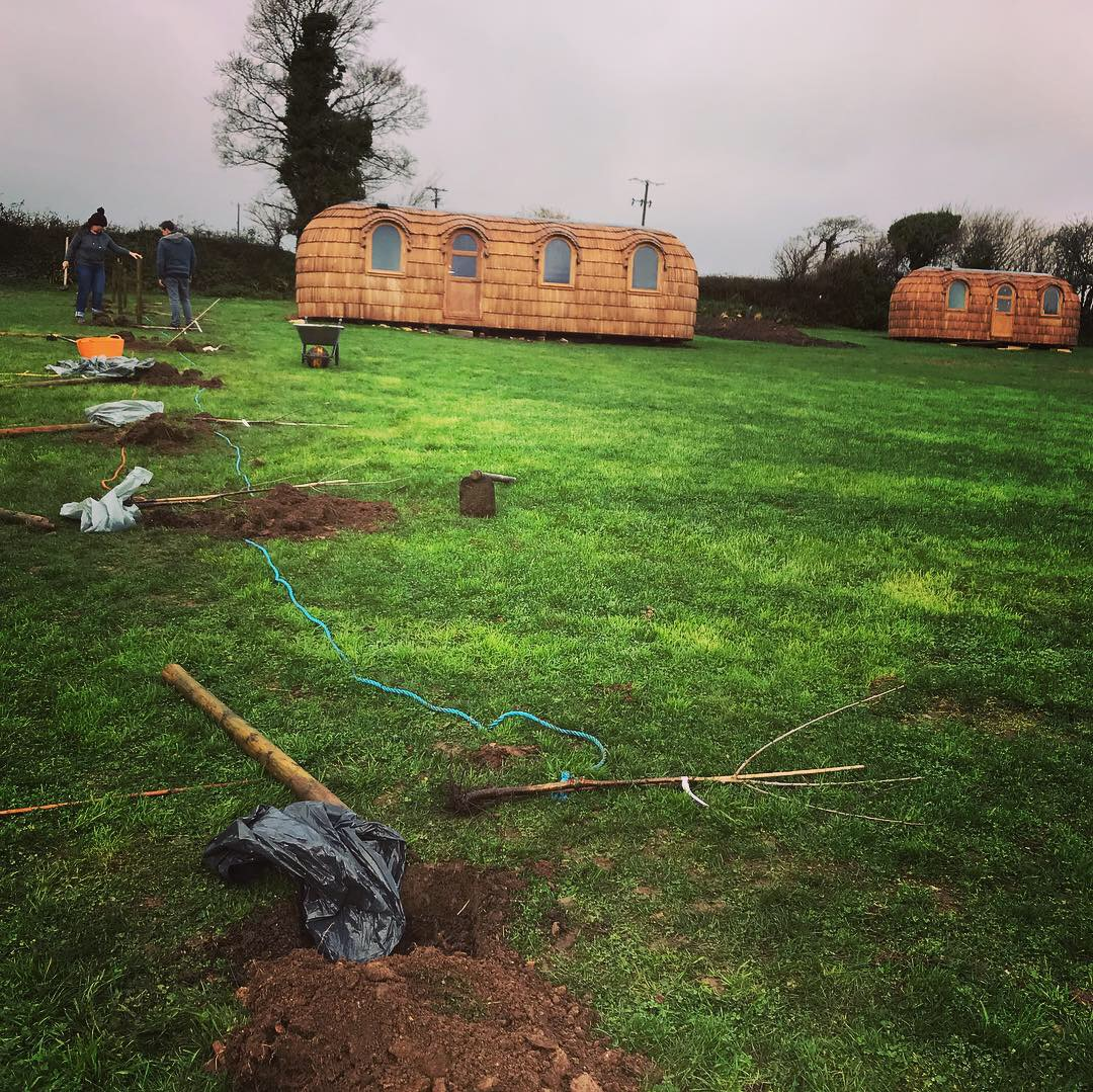 planting Lydcott Orchard
