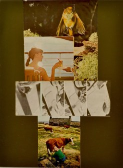 """In Hand,"" Mixed media, 2012"