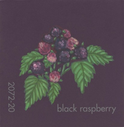 """""""Black Raspberry,"""" acrylic on commercial paint chip, 2.5 x 2.5in, 2017"""