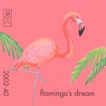 flamingos dream