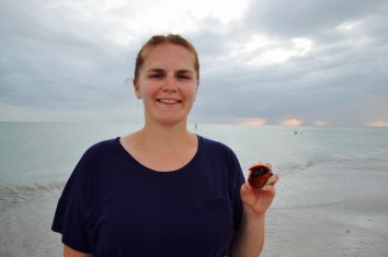 Lauren found a shell with a live creature in it! Don't worry, it is back in the ocean now.