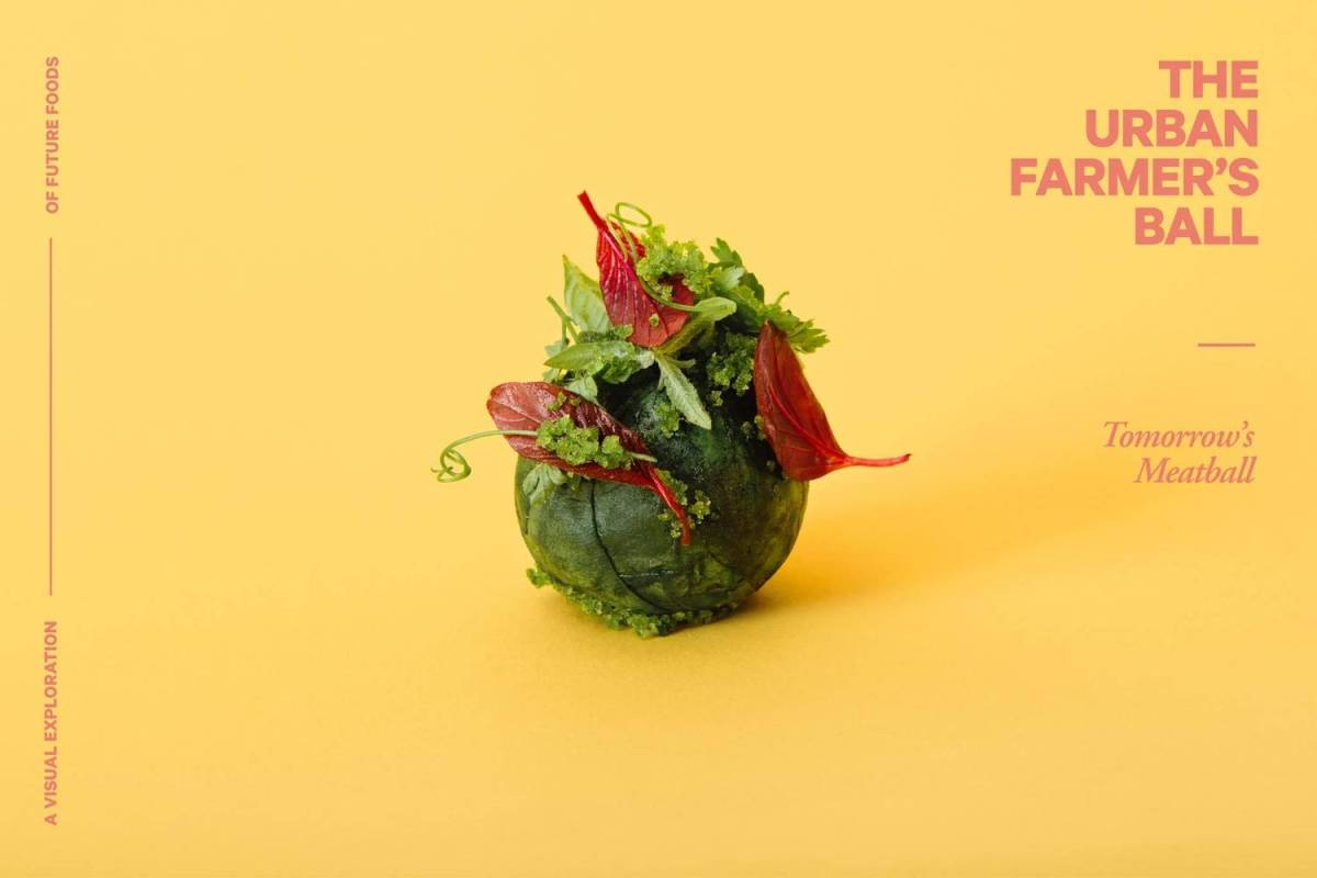 Food of the future?