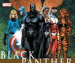 Black Panther Civil War