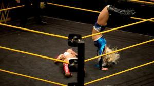 NXT 3-18-15 - Alexa Bliss vs Sasha Banks