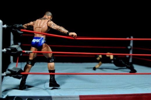 Randy Orton Mattel WWE Elite 35 -ready to punt
