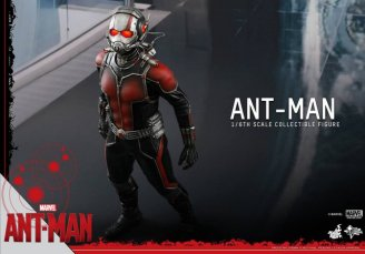 Hot Toys Ant-Man figure -looking up