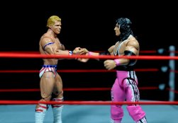 Lex Luger WWE Mattel Elite 30 figure -Bret Hart and Luger shaking hands