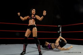 brie-bella-mattel-basic-brie-mode-on-paige