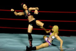 brie-bella-mattel-basic-kicking-emma