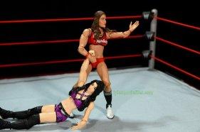 Nikki Bella Mattel WWE figure - dragging Paige
