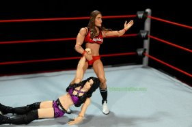 Nikki Bella Mattel WWE figure - dragging Paige